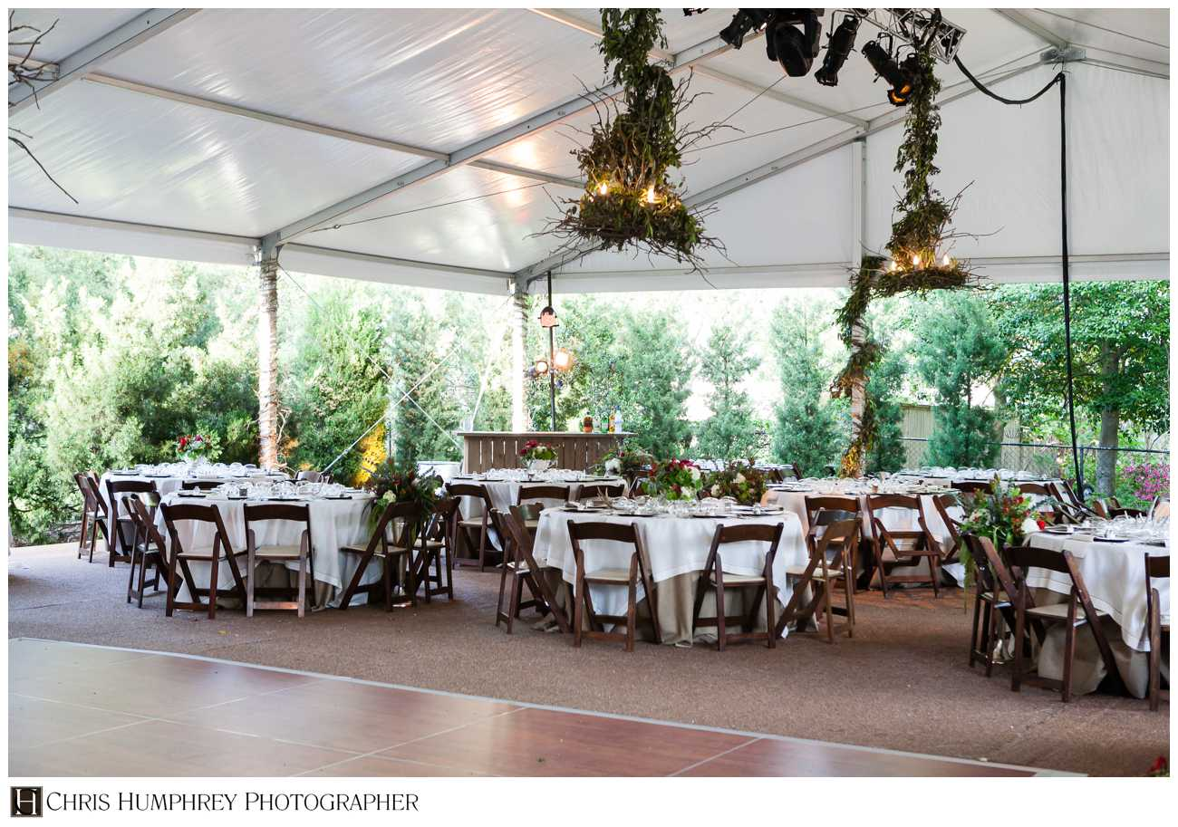 fruitwood chairs under tent