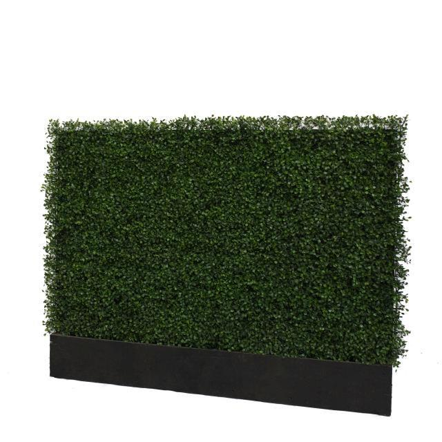 Rent Boxwood Panels